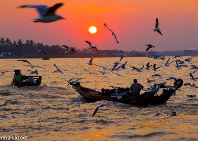 Yangon River boats birds