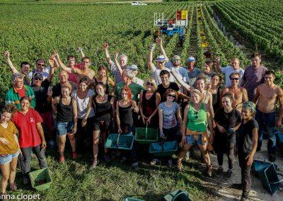 Grape-pickers#vendanges